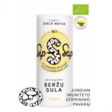 EKO Beržų Sula, su Imbieru ir Laimu SIP SAP, 250 ml.*