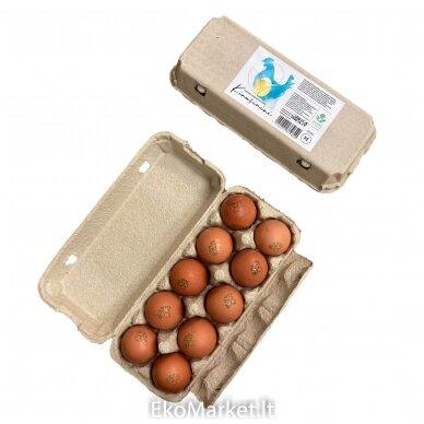 Jaunų vištų kiaušiniai, Farmers Circle 10 vnt.