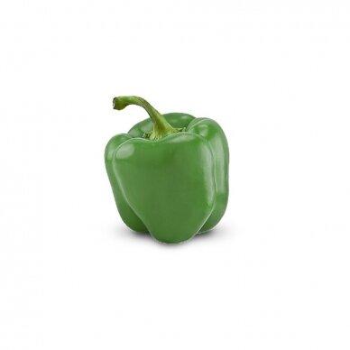 Lietuviškos paprikos, žalios 0,5 kg.*