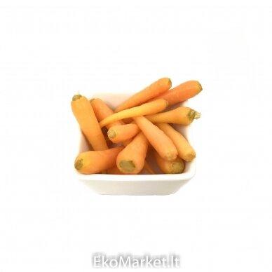EKO Marinuotos jaunos morkytės, Farmers Circle 0,5 kg. 2