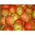 """Obuoliai """"Šampion"""", 1 kg."""