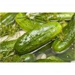 Rauginti agurkai, R. Andriulio ūkis 0,5 kg.