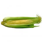 Saldžių kukurūzų burbuolės, 1 vnt.